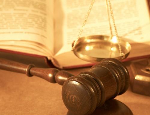 Access Info recurre la sentencia que limita el derecho de acceso a información elaborada exclusivamente por organismos públicos