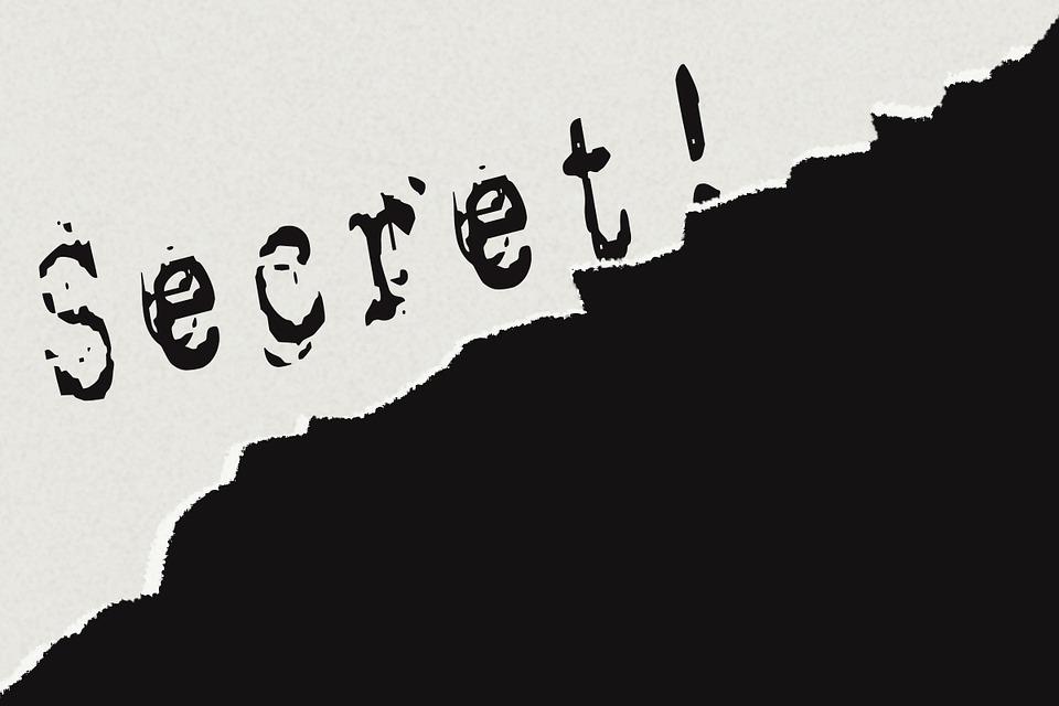 Plan de Empresa y Derechos Humanos: Top Secret